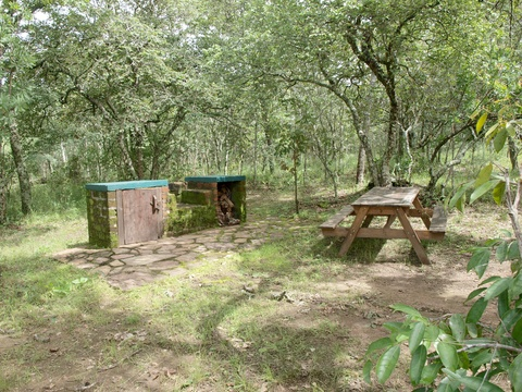 Campsite, Mutinondo, Braii, Picnic Table, Bench, Wilderness, Secluded, Tranquil, Zambia, Muchinga